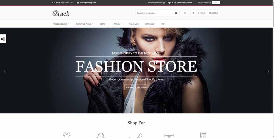 customize shopify theme 2