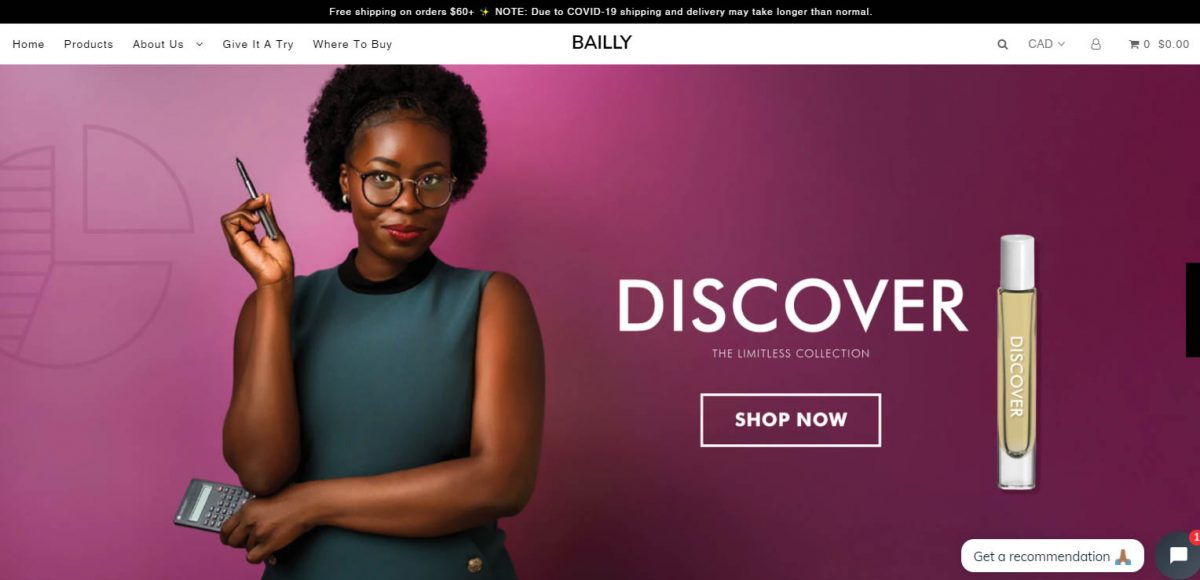 successful Shopify stores - Bailly