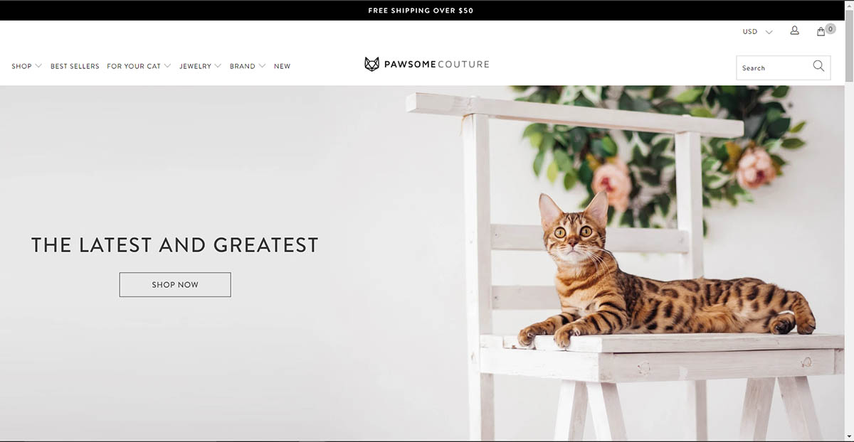 Above-the-fold contents in Pawsome Couture homepage