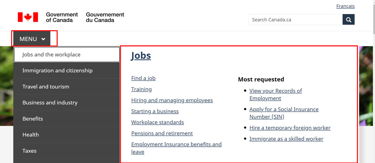 Example of Canada Government site