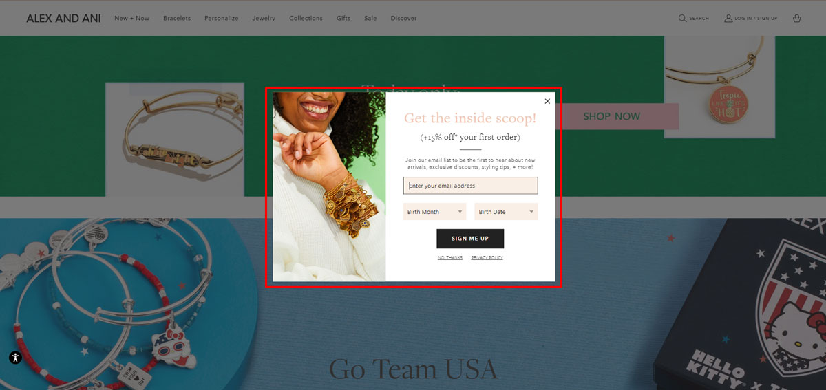 Newsletter signup form - Shopify store example - Alexandani